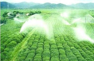 农药杀菌剂是目前农业市场较为流行的一种农药品种