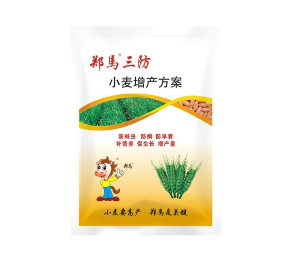 小麦增产方案