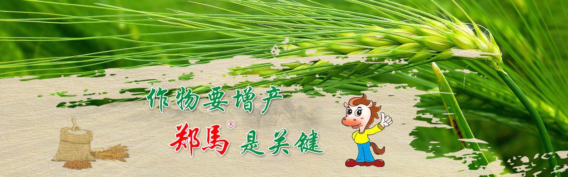 小麦增产套餐