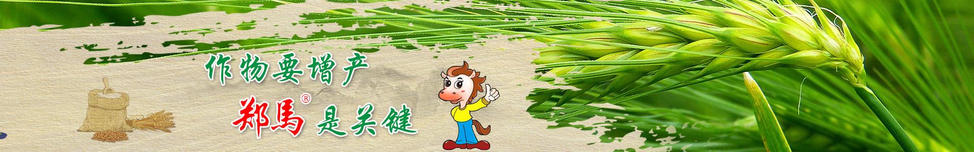 千里马农业